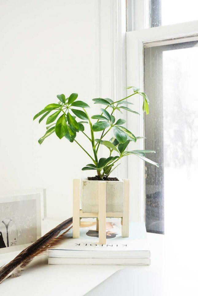 Betonbak met plantenstandaard maken