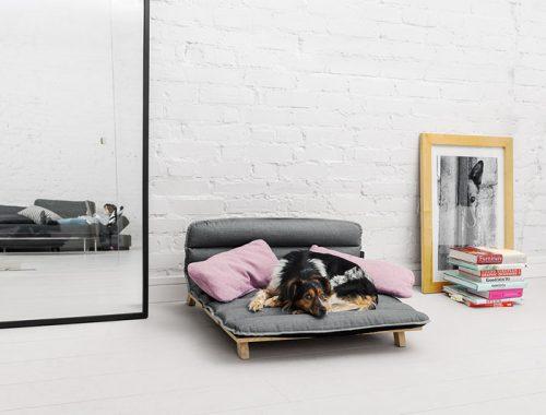 Designstoel voor honden