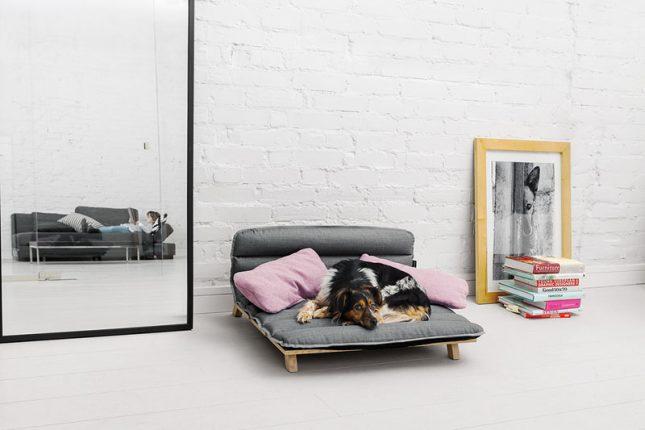 Design Voor Honden : Designstoel voor honden interieur inrichting