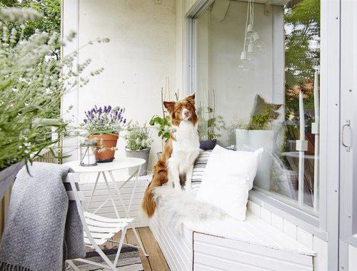 Dit kleine balkon is super leuk en knus ingericht