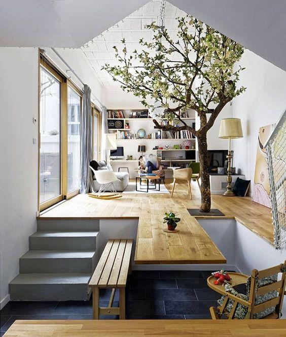 Een Boom In Huis Interieur Inrichting