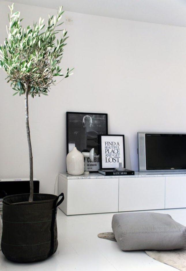 Grote kamerplant interieur inrichting for Wohnzimmer mit pflanzen
