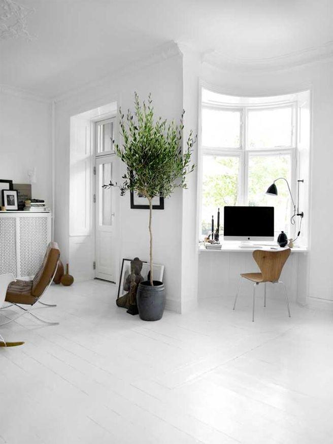 Grote kamerplant | Interieur inrichting