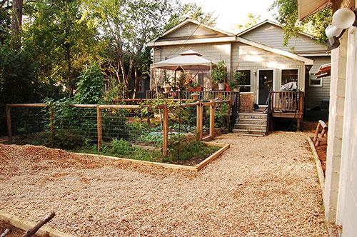 Hond vriendelijke tuin