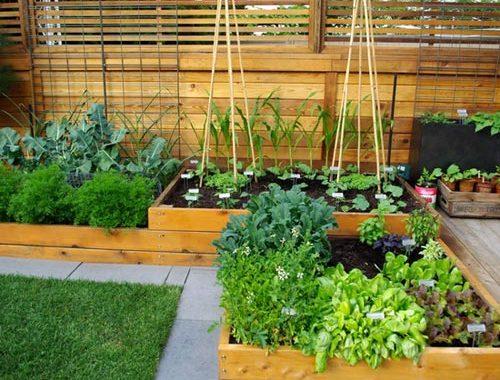 Houten plantenbakken voor de tuin
