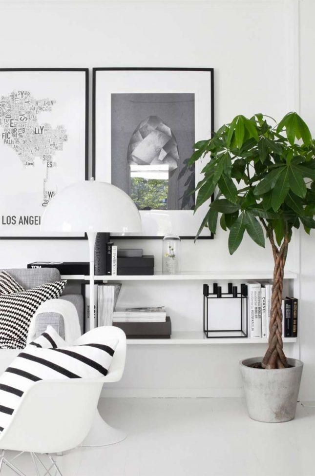 ikea plant geldboom