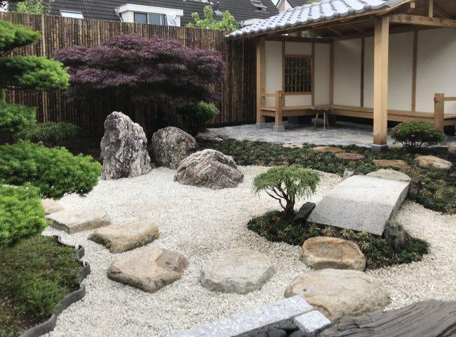 japanse tuin mooie boom planten