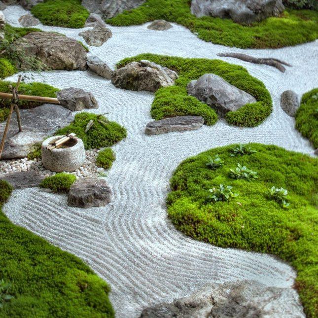 japanse tuin mos