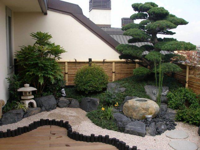 japanse tuin planten