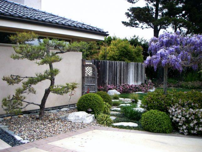 japanse tuin planten bomen
