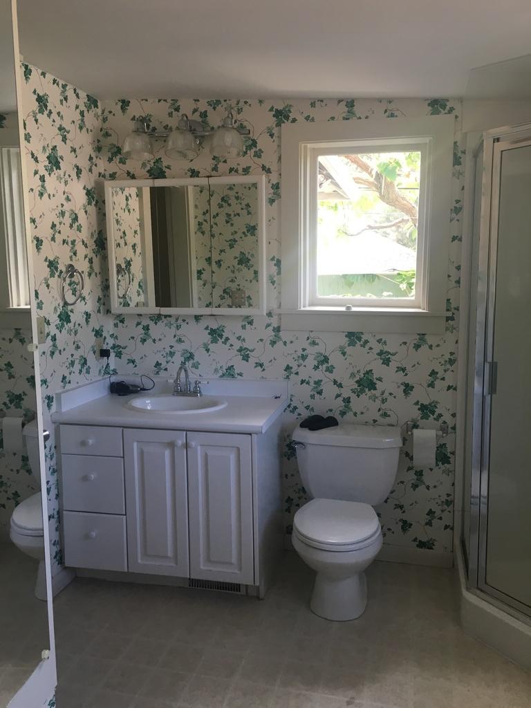 klassieke-badkamer-renovatie-met-moderne-voorzieningen-before-3