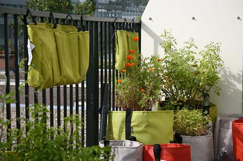 Kleurrijke planttassen op balkon