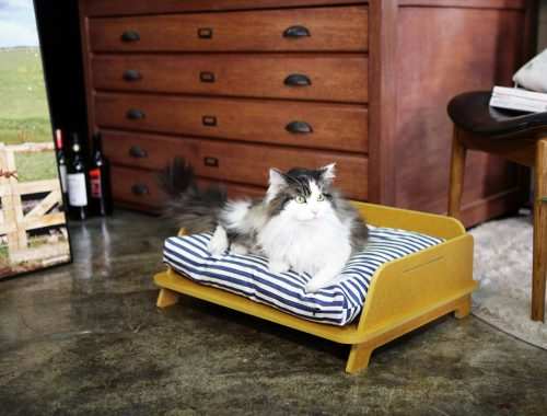 Leuke kattenbakken en hondenbakken van STAYSTAY
