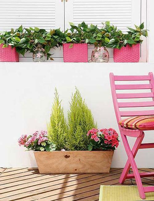 Leuke planten op balkon