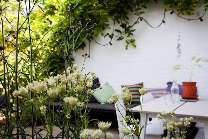 Leuke tuin uit Zweden