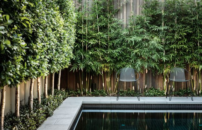 Met deze tuin heb je geen vakantie nodig
