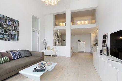 Moderne Scandinavische loft