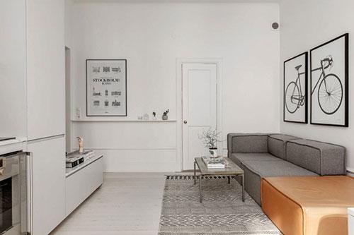 Kleine Smalle Keuken Inrichten : Perfecte woonkamer van een klein appartement Interieur inrichting