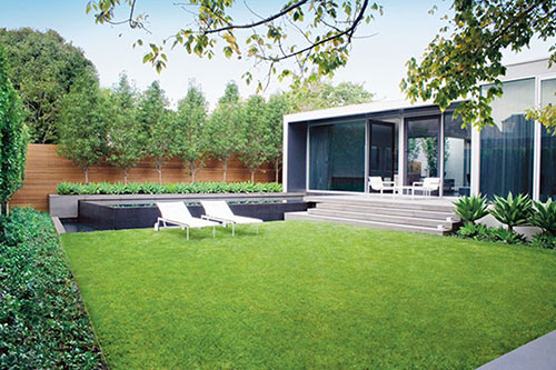 Planten en bomen in de tuin interieur inrichting - Idee deco eetsalon eigentijdse ...