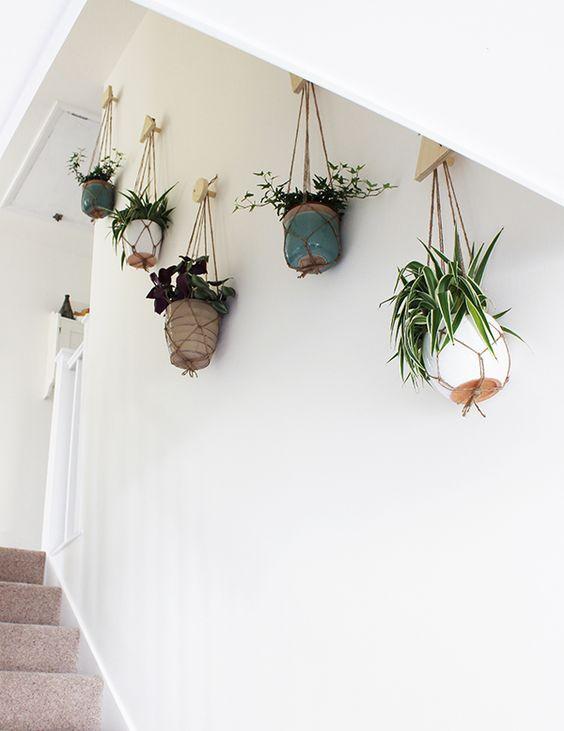 Planten Aan De Muur.Een Wand Vol Met Planten Interieur Inrichting