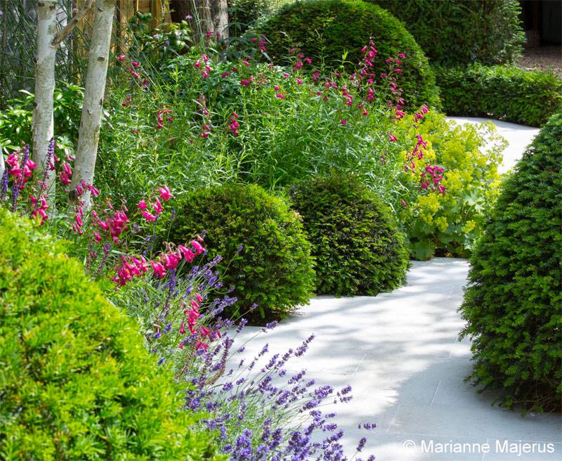 Super mooie romantische tuin, ontworpen door Londen Garden Designer, met een pad met prachtige bloemen en planten in die het pad volgen.