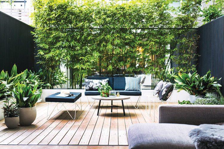 schutting ideeën spiegelwand bamboe planten