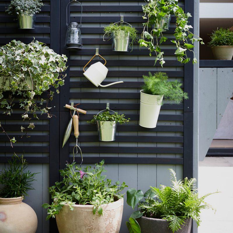 schutting ideeën verticaal tuinieren