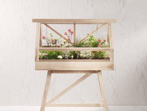 The Greenhouse - mini kas voor in huis