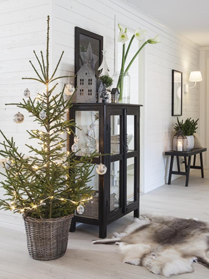 Traditionele kerstboom