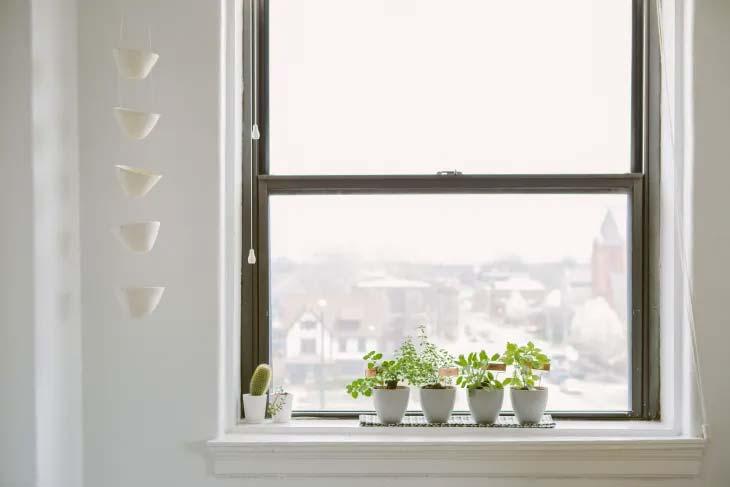vensterbank decoratie moestuintje