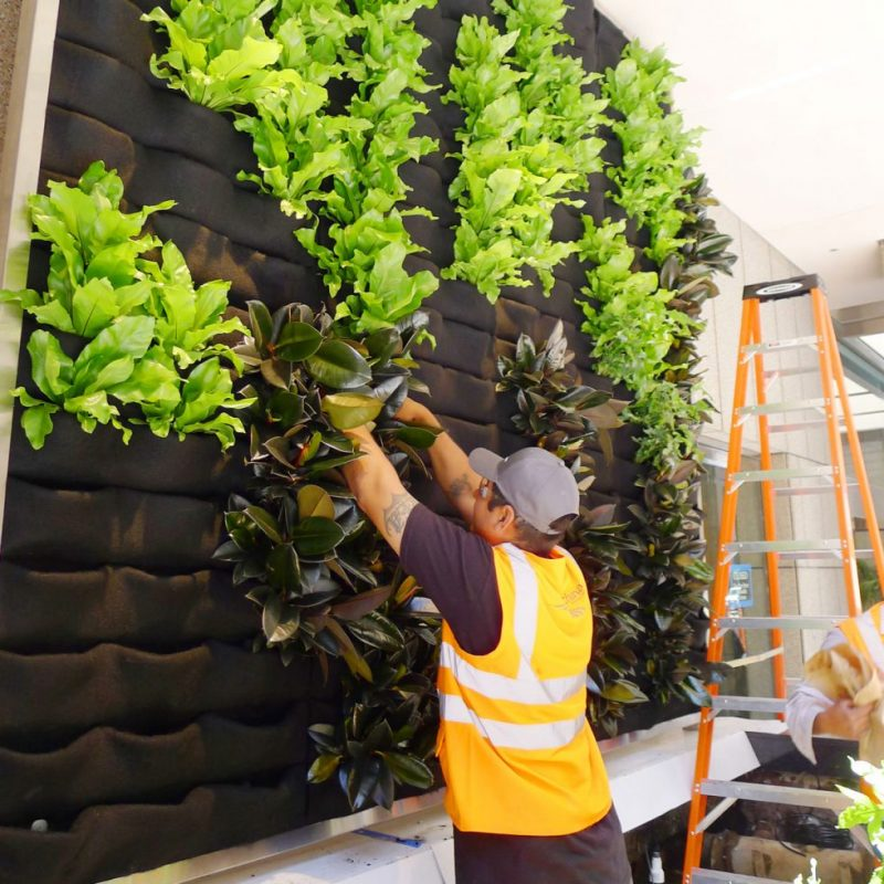 verticale tuin maken in huis