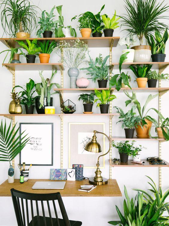 werkplek-vol-planten