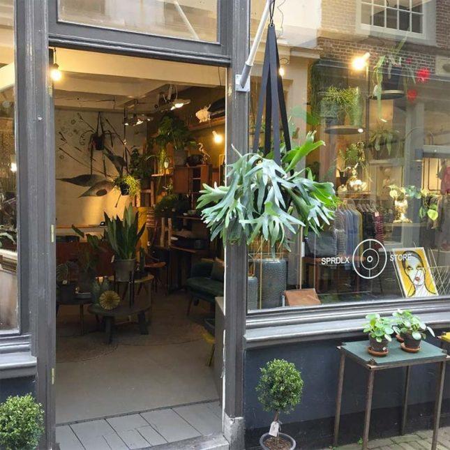 Woonwinkels Alkmaar SPRDLX Store